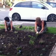 st_andrews_gardening_2