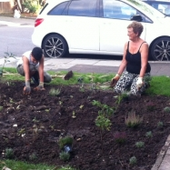 st_andrews_gardening_3